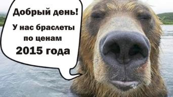 "Все браслеты на колеса ""Гризли"" по ценам 2015 года"